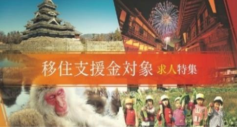 長野県ホームページの移住支援金対象求人特集の画像