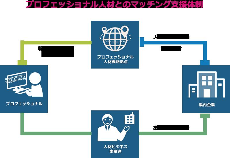 プロフェッショナル人材戦略拠点がプロフェッショナル人材へ転職・移住などの情報発信を行い、人材ビジネス事業者が県内企業へプロフェッショナル人材のあっせん・紹介を行う。